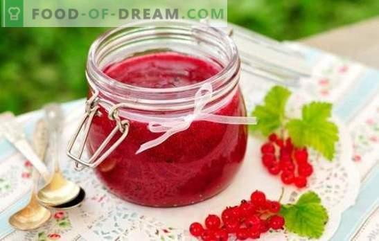 Besjam voor de winter - voor smaak en gezondheid! Recepten van verschillende jam van rode en zwarte bessen voor de winter