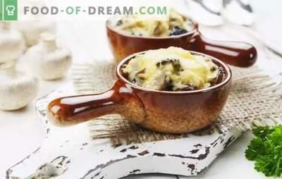 Klassieke kip en champignon julienne - het is gemakkelijk! Geheimen van de klassieke Julienne met kip en champignons in cocottes en tartlets