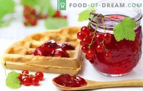Rode bessengelei is een helder en gezond dessert. De beste recepten van rode bessen gelei met cottage cheese, room, melk, wijn