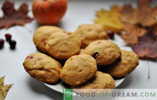Eenvoudige smakelijke koekjes op kefir - de traditie van thuis bakken. Recepten voor eenvoudige cookies op kefir: havermout, met kaneel, chocolade, noten, maanzaad, enz.