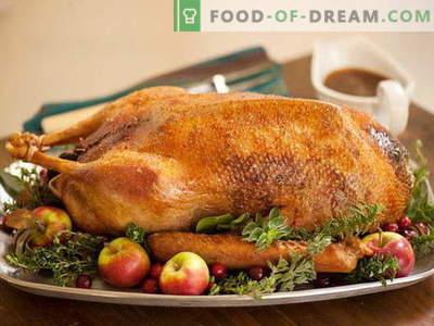Gebakken gans in de oven - de beste recepten. Hoe goed en smakelijk ganzen in de oven koken.