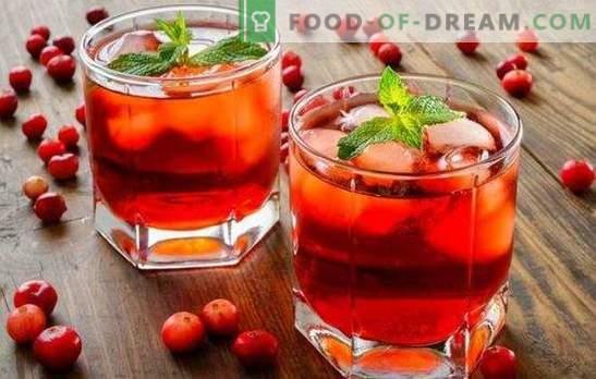 Zelfgemaakte cranberrytinctuur - de meest bruikbare bes. 2in1: ongeëvenaarde smaak en voordelen van zelfgemaakte cranberrytincturen