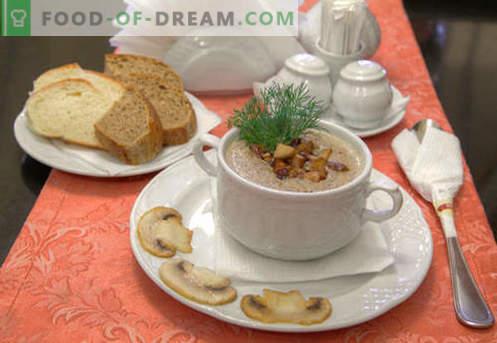 Champignonpuree-soep - bewezen recepten. Hoe goed en lekker een soep van champignons koken.