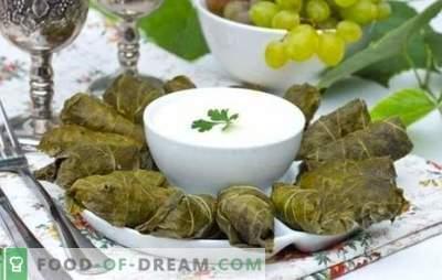 Dolma in druivenbladeren is de kroon op de Kaukasische culinaire kunst. Klassieke en originele recepten dolma in druivenbladeren