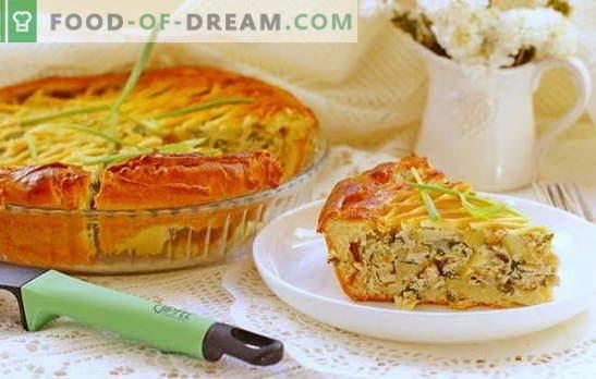 Taart met gehakt en aardappelen in de oven - bevredigend! Receptenpastei met gehakt en aardappels in de oven van gist en gistvrij deeg