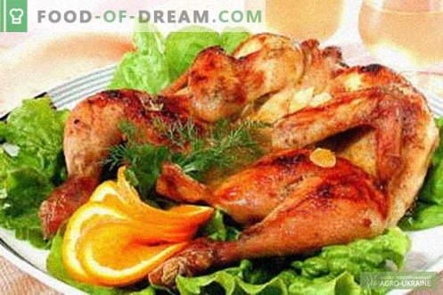 Kippentabak - de beste recepten. Hoe goed en lekker kip met tabak te koken.