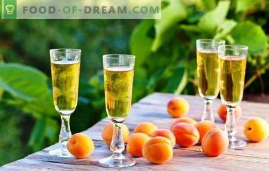 Zelfgemaakte wijnmakers onthullen de geheimen van eenvoudige abrikozenwijnen. Recepten voor verschillende zelfgemaakte abrikozenwijnen