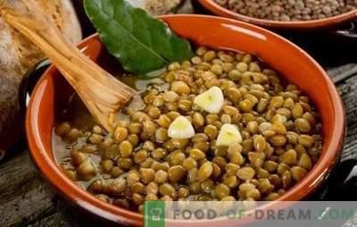 Linzenhavermoutpap is een gezond en ongewoon gerecht voor elke dag. Diverse recepten voor linzenpap voor gezondheid en vreugde