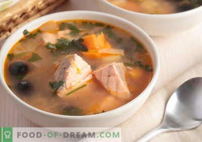 Juhe iz rožnatega lososa - dokazani recepti. Kako pravilno in okusno kuhamo juho iz rožnatega lososa.