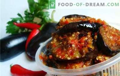 Eggplants in adjika: we cook according to southern traditions. A variety of options for cooking eggplants in adjika