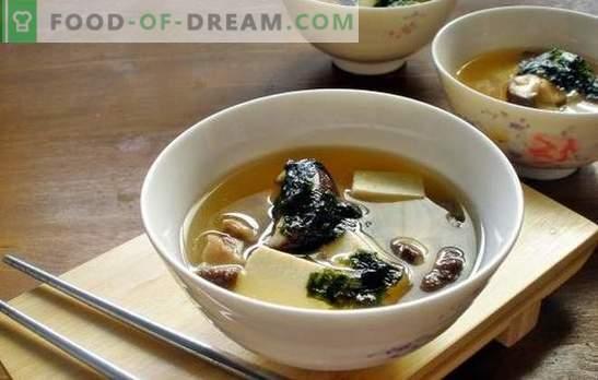 Oesterzwamspensoep - een aromatisch gerecht voor de lunch op elk moment van het jaar. De beste recepten van champignonsoep van oesterzwammen met kip, kaas, etc.
