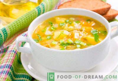 Vetverbrandende soep - bewezen recepten. Hoe goed en lekker om vetverbrandende soep te bereiden.