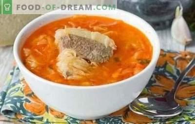 Soep in vleesbouillon - altijd waar! Kokende, smakelijke soep in vleesbouillon van verse en zuurkool volgens de beste recepten