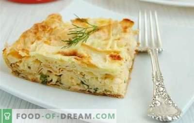 Pita brood in de oven - de beste recepten: ideeën voor luie huisvrouwen. Hoe maak je taarten, broodjes, warme hapjes van pita in de oven