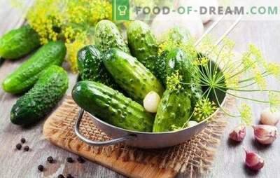 Instant gezouten komkommers. Supergezouten komkommers: instant recept in een verpakking