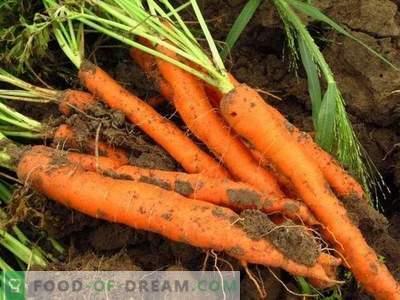 Nuttige eigenschappen van wortels