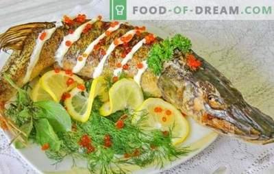 Snoek in de oven: stapsgewijze recepten voor gebakken en gestoofde vis. Bewezen stap-voor-stap recepten voor snoeken in de oven in zijn geheel en in stukjes