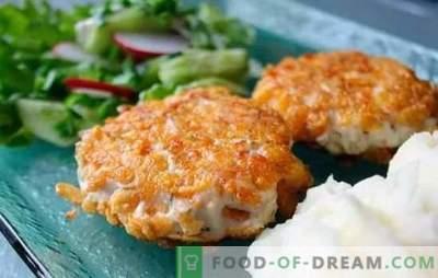Kipkoteletten in al zijn diversiteit! Recepten voor sappige en smakelijke stukjes kip met kaas, champignons, rijst en roomsaus