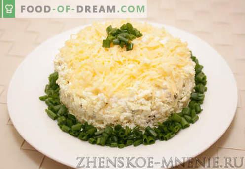 Gelaagde salade - een recept met foto's en stapsgewijze beschrijving