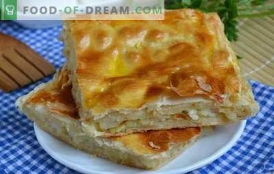 Gelaagde cake met ingeblikte vis - origineel! Recepten voor bladerdeeggebak met ingeblikte vis van tonijn, haring, makreelgeep, zalm