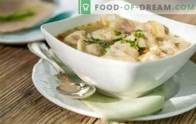 Heerlijke dumplings met bouillon van vlees, champignons, groenten en greens. Originele recepten van dumplings met bouillon voor familie en gasten