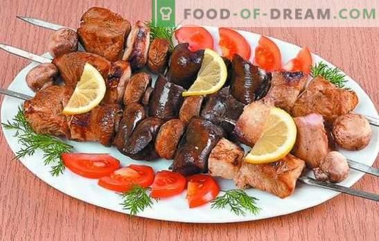 Turkije-kebab: recepten voor mals vlees. Geheimen van de marinade voor kalkoenkebab: pittig, snel, kefir, wijn