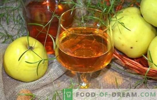 Apple-wijn is niet eenvoudig, maar heel eenvoudig! Recepten voor het maken van heerlijke wijn uit appels thuis