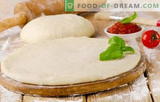 Pizzadeeg met melk is een smakelijke basis voor een smakelijk gerecht. Een verscheidenheid aan pizzadeeg koken met melk: weelderig, zacht, knapperig