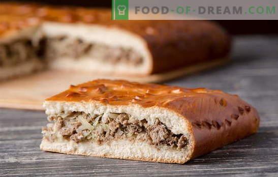 Gistdeeg vleespasteien: gedetailleerde recepten. Oude tradities en nieuwe ideeën voor pastei met gistdeegvlees