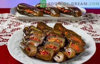 Ingelegde aubergines - snel, smakelijk, geurig! Alle methoden voor het bereiden van snelle en smakelijke aubergines met ingemaakte eieren