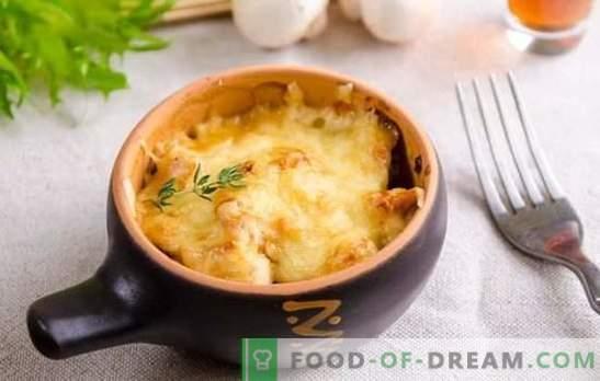 Verbazingwekkende julienne: stap-voor-stap recepten voor je favoriete gerecht. Franse Julienne met kip, verse en gedroogde champignons
