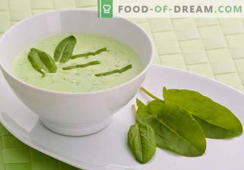 Runderbouillon soep - de beste recepten. Hoe goed en smakelijk koken soep op rundvlees bouillon.