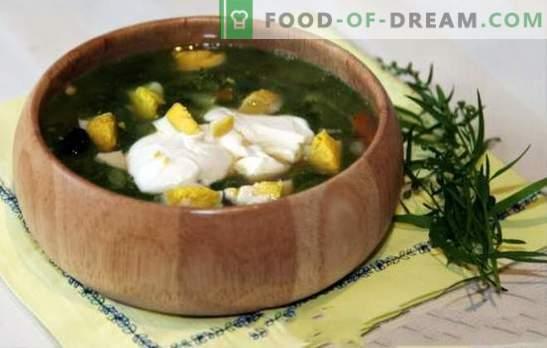 Zuringsoep in kippenbouillon - lente-zomer menu. Zuringsoep met kippenbouillon - snelle recepten voor voorgerechten met gezond rationalisme