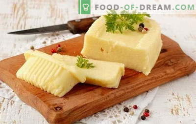Zelf kaas maken met melk: zacht en hard. Recepten voor kaas uit melk thuis en technologie