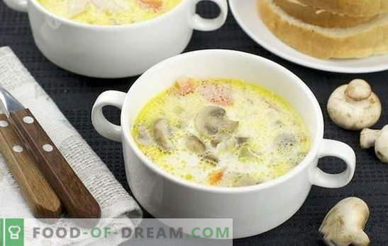 Mushroomroomsoep: klassiek en origineel. Recepten lichte champignonroomsoep voor zakelijk en thuis diner