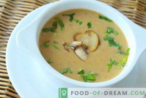 Champignonsoep - de beste recepten. Hoe goed en smakelijk champignonsoep koken.