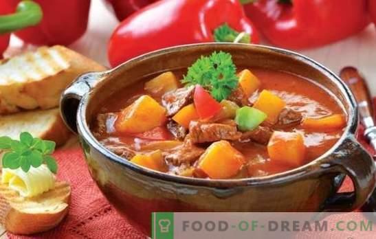 Soep met vlees en aardappelen: de recepten zijn eenvoudig en heel eenvoudig. Aardappel- en vleessoepen: mager, kip, rund, groente
