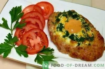 Varkensvleesschnitzel in de oven - een gerecht dat koningen waardig is. Een selectie van de beste recepten voor varkensschnitzels in de oven