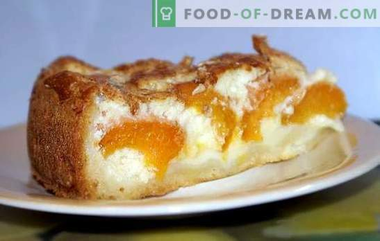 Gist en abrikozentaart geven elke taart een kans. Recepten voor open en gesloten gisttaarten met abrikozen