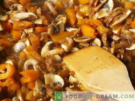 Gestoofde champignons - de beste recepten. Hoe u gestoofde paddenstoelen op de juiste manier bereidt en bereidt.