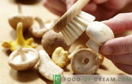 Hoe champignons schoon te maken: voor koken, frituren, marineren. Koken champignons voordat ze worden gekookt en waarom?