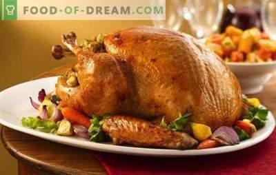 Turkije kalkoen met groenten - lekker, gezond, mooi! Een selectie van dieet- en feestrecepten voor kalkoen met groenten