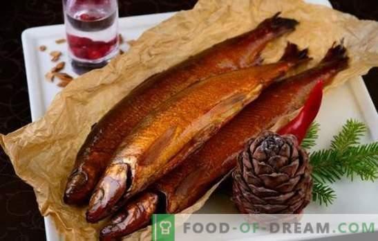 Wijn en citrus tonen in warm gerookte marinades. Koken van vis en vlees met warm gerookte marinades