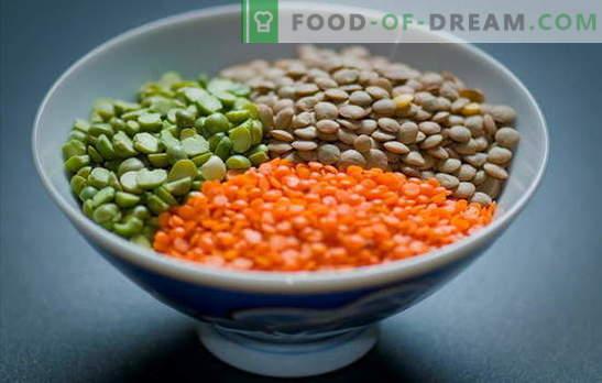 Kokende linzen rood, groen, bruin, zwart koken. Eenvoudige manieren om linzen in een pan en een slowcooker te koken: geheimen en trucs
