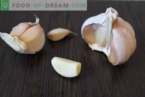 Pompoensoep puree - een heldere stemming op elk moment van het jaar. Stapsgewijs recept met een foto: pompoensoep, verschillende opties
