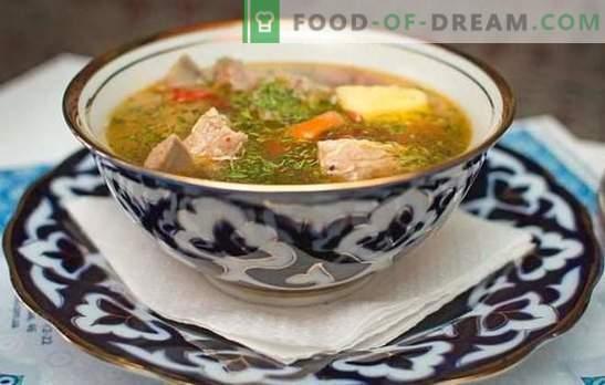 Kip shurpa is zowel geurig, smakelijk en voedzaam. De beste recepten voor heerlijke zelfgemaakte kip shurpa