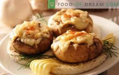 Gevulde champignons in de oven met kaas - spectaculaire paddenstoelen! Recepten voor gevulde champignons in de oven met kaas en niet alleen