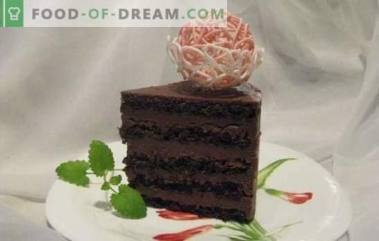 Chocoladebiscuit - een uitzonderlijk dessert! Recepten delicate en altijd heerlijke chocoladekoekjes van koekje