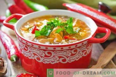 Chicken Kharcho-soep - de beste recepten. Hoe goed en smakelijk koken soep Kharcho van kip.
