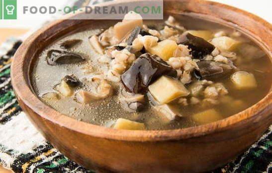 Champignonsoep van bevroren champignons - het aroma van de herfst! De beste recepten van champignonsoep van bevroren champignons